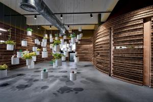 Cardboard Office Showroom